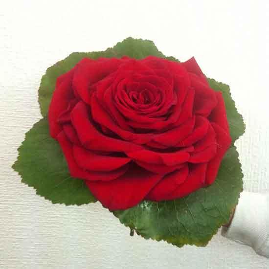 Ramo para novia con flor Rosmelia natural por 50€. Dilas que vas de parte de AlcorconHoy.