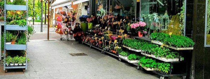 Flores contra el coronavirus en Alcorcón