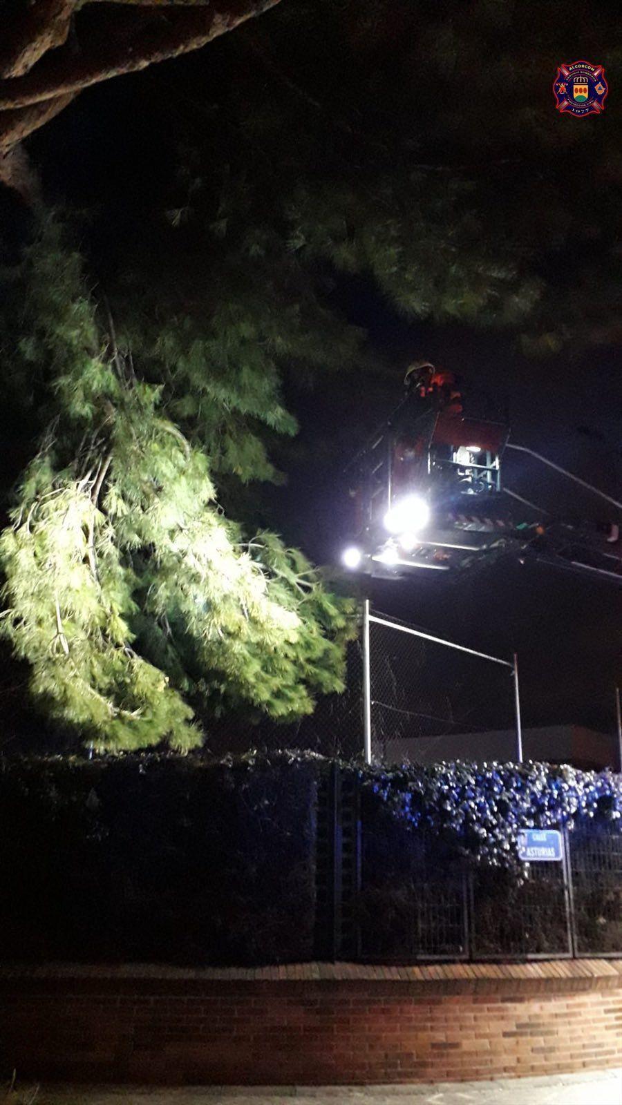 Más de una treintena de denuncias este fin de semana en Alcorcón por saltarse las restricciones