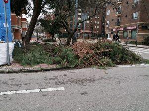 Aún quedan muchas ramas por retirar en Alcorcón