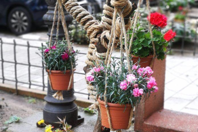 El jardín más bonito de Alcorcón