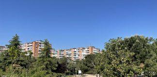 Trabajos de retirada de los restos de Filomena en Alcorcón