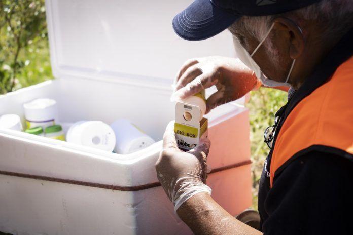 Campaña de control de plagas en Alcorcón