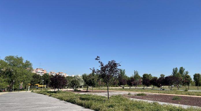 Se refuerzan las actividades deportivas y al aire libre para los mayores en Alcorcón