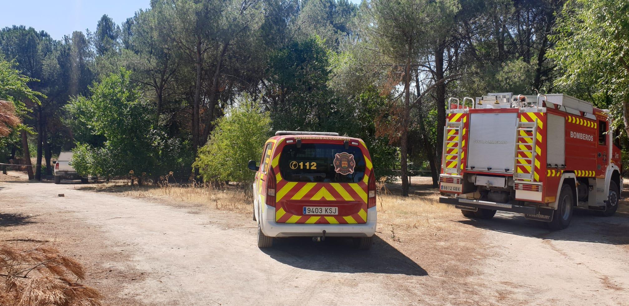 En Las Presillas de Alcorcón el fuego se apaga antes de que se produzca