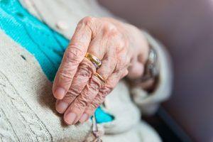 Vuelven los viajes para los mayores de Alcorcón