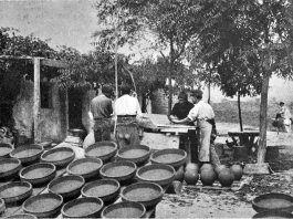 Así éramos en Alcorcón en 1898