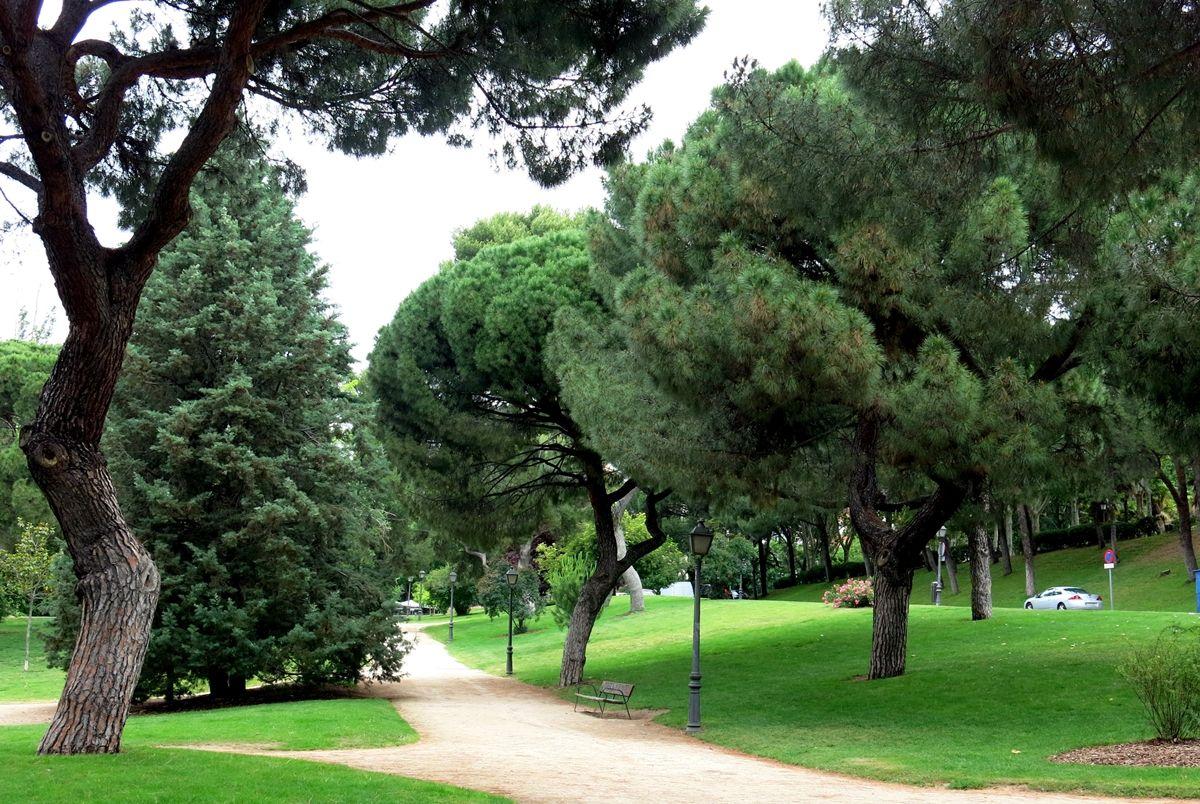 Actividades y talleres gratuitos para los jóvenes de Alcorcón