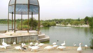 Nuevos detalles sobre la mujer hallada muerta en el lago del Parque Polvoranca de Alcorcón