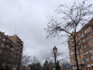 Bonos de 250 mensuales para ayudar al alquiler a los jóvenes de Alcorcón